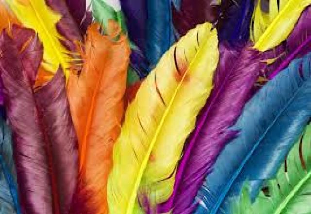 Học từ vựng tiếng nhật theo chủ đề về màu sắc