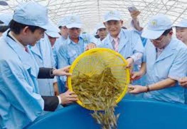 Học từ vựng tiếng Nhật theo chủ đề về xuất nhập khẩu