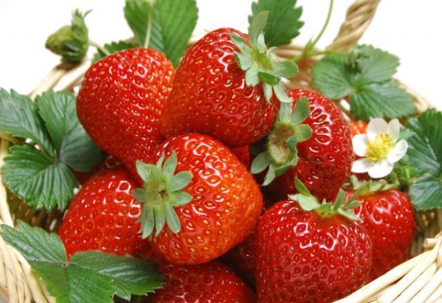 Học từ vựng tiếng Nhật theo chủ về đề trái cây