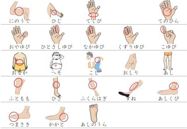 Chia sẻ một số từ vựng tiếng Nhật y học