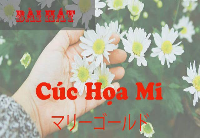 Học tiếng Nhật qua bài hát マリーゴールド - Cúc họa mi